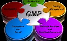 gmp-1-226x138